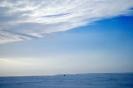 arktik_10